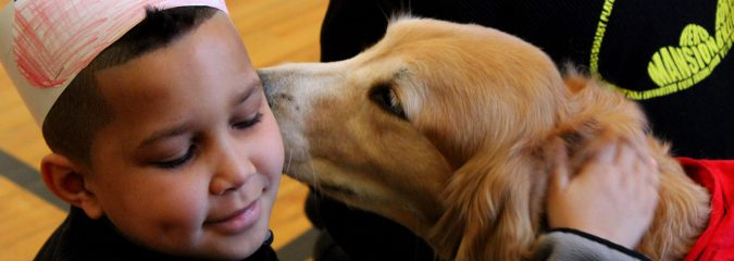 Dog days: School therapy dog programs promote social and academic skill sets