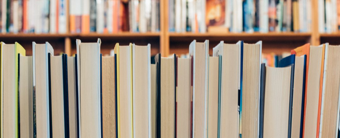 Library books lined up on a shelf